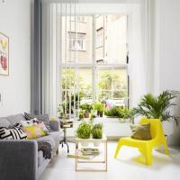 Cum decoram cu plante si verdeata