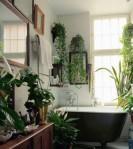 plante_baie