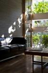 plante_jardiniera_fereastra