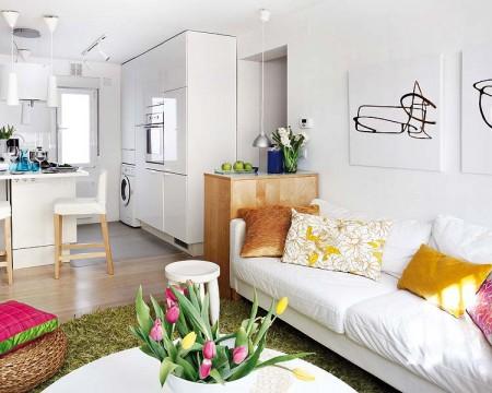 apartament1camera open plan1