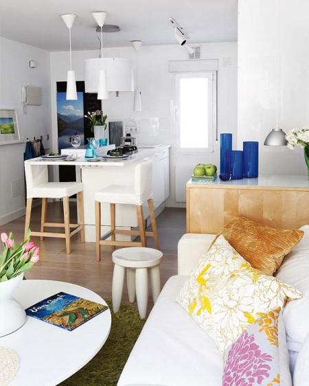 apartament1camera open plan3